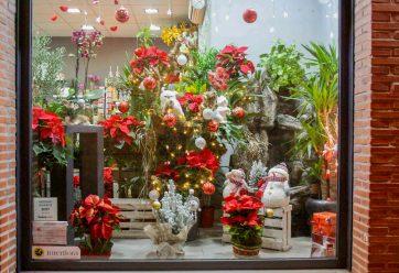 Decoración Navideña de Nuestro Escaparate · Floristería Los Santos Niños · Alcalá de Henares · Madrid